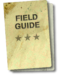 Download our Field Guide, it has everything you need to know
